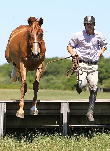 horse and trainer jumping